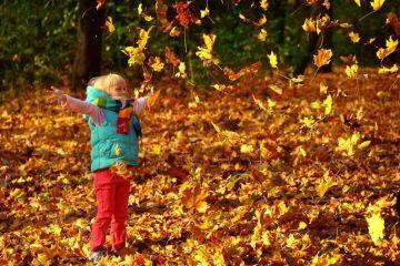 Дівчинка і листя. Осінь