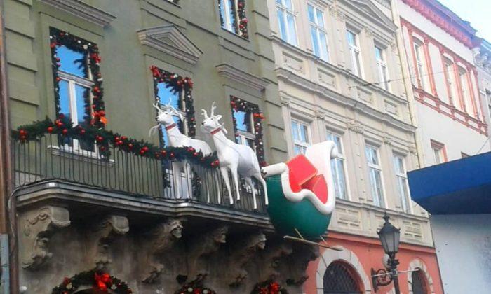 Різдво у Львові, олені