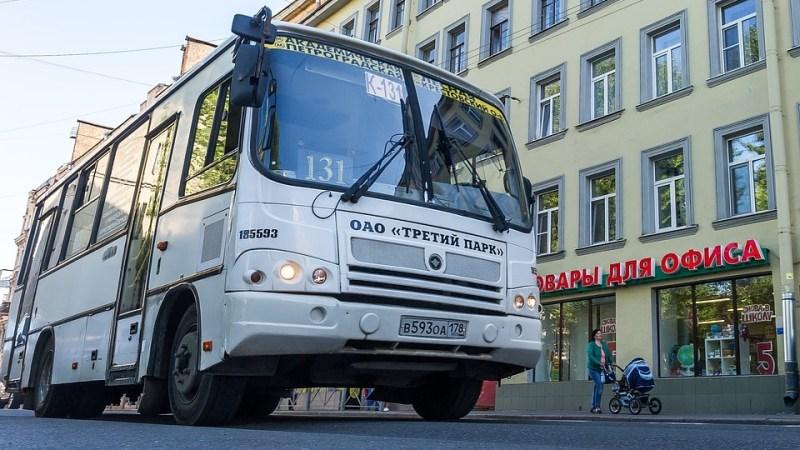 Петербуржцы защищают маршрутки с помощью петиции