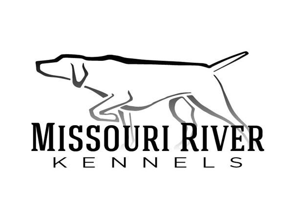 Gun Dog Trainer Website Design