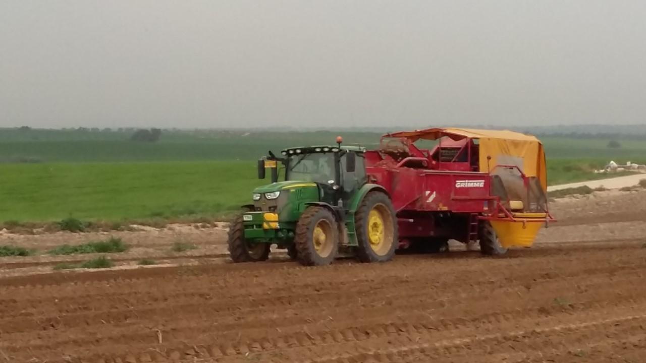 Land Aardappelen Import