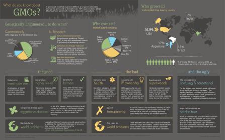 GMOs Infographic 1
