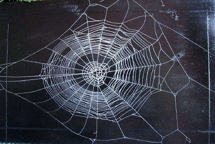 who weaves the web?