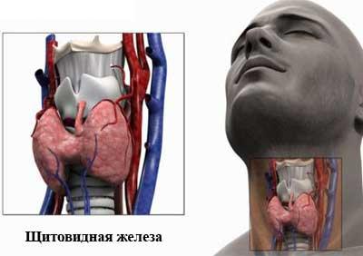 Общее оздоровление организма с помощью лечебных методик