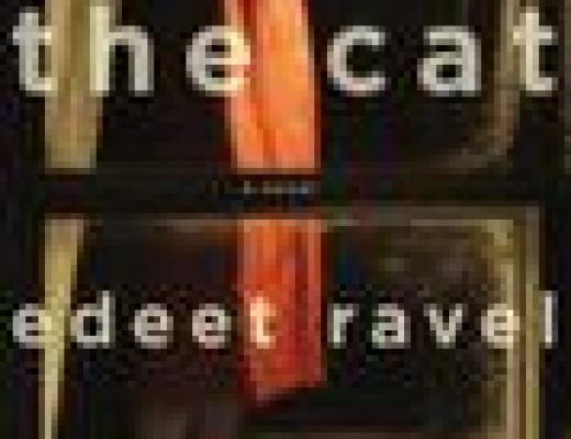 Book Talk: THE CAT, by Edeet Ravel (via Shelf Awareness)