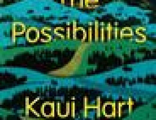 Book Talk: THE POSSIBILITIES, by Kaui Hart Hemmings