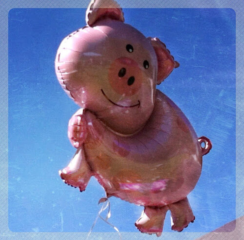 Picture It: When Pigs Fly…
