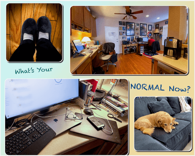 what's your normal now? collage