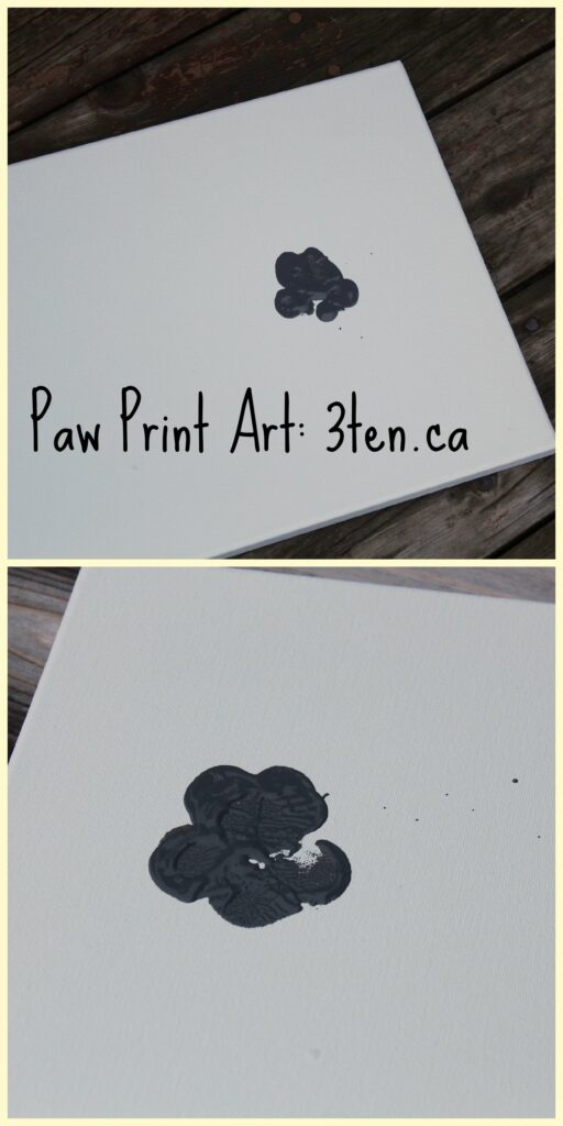 Paw Print Art: 3ten.ca #dogs