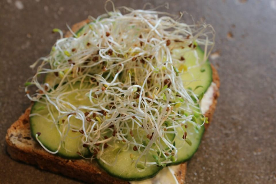 Cucumber Toast: 3ten.ca
