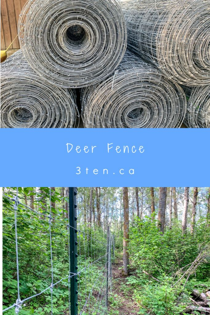 Deer Fence: 3ten.ca