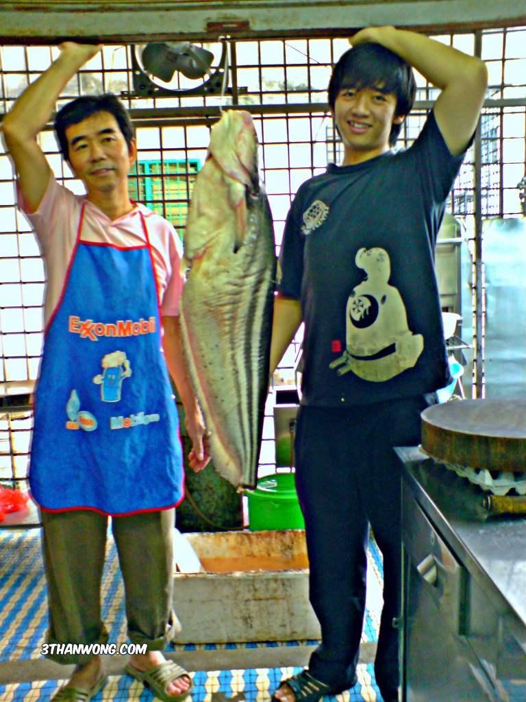Tapah Fish Catfish
