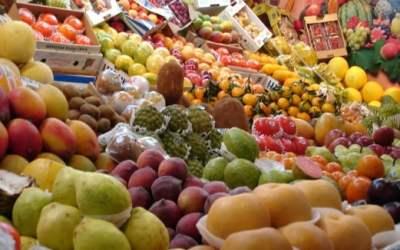 Malaysian Fruits – The Local Fruits of Malaysia