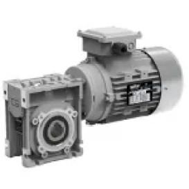 Réducteur Roue et vis moteur 220 volts