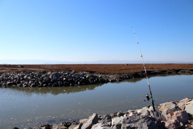 A quiet fishing pole. (Photo by Jim Hobbs)