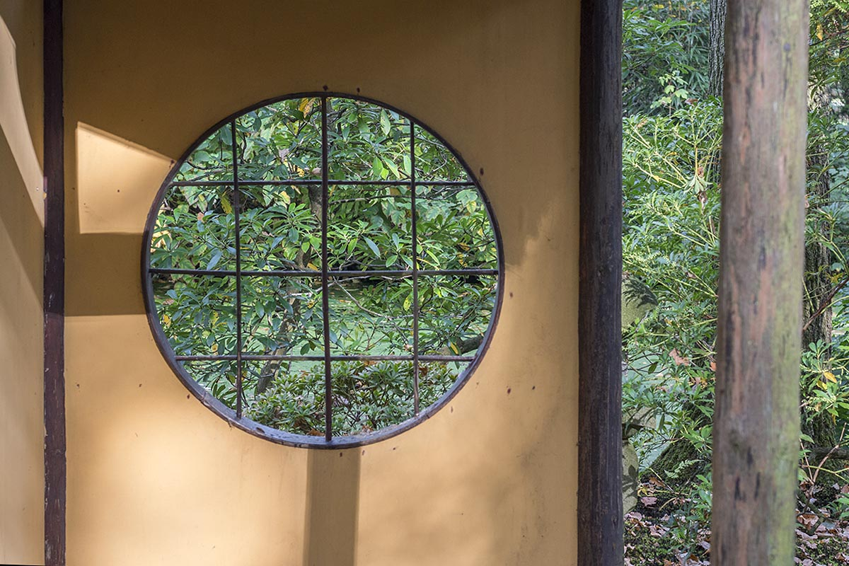 week 41, jenny smit, japanse tuin, den haag