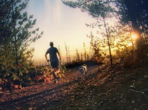 Chris Walley, Trail running stellenbosch