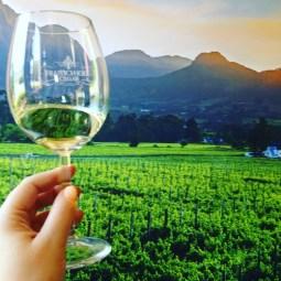 Wine Tasting Franschhoek