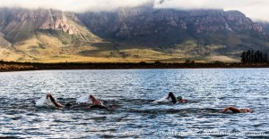 Boschendal Open water swim 9 December