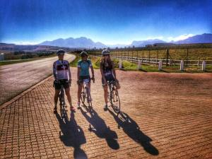 Wine lands ride Stellenbosch