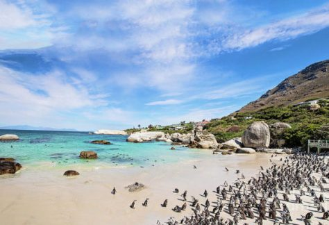Western Cape cycling and adventure tour