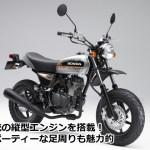 縦型スポーツモデル、ホンダ(HONDA) エイプ(APE)50