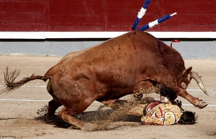 cogida-torero-juan-jose-padilla-las-ventas-madrid