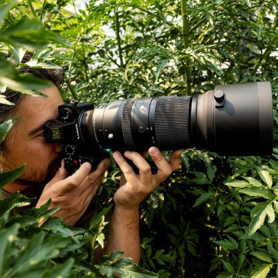 DPReview TV: Sigma 150-600mm F5-6.3 DG DN OS review