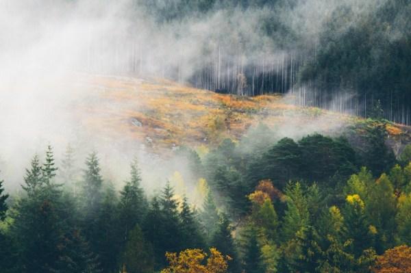 Art Landscape Canon Nature Uk Artists