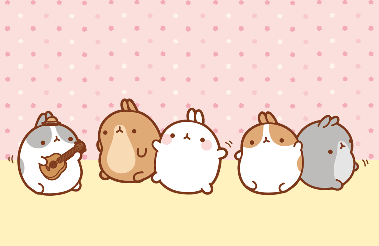 Cute Tofu Desktop Wallpaper Molang Learning To Dance In Rythm It S Difficult Like