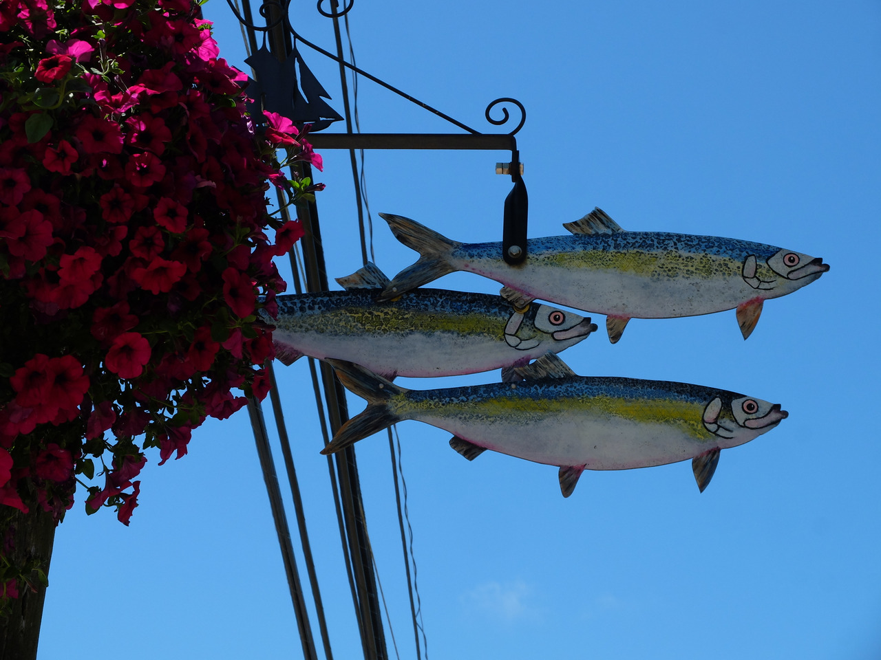 mangia minga // Travels: Lunenburg, Novia Scotia