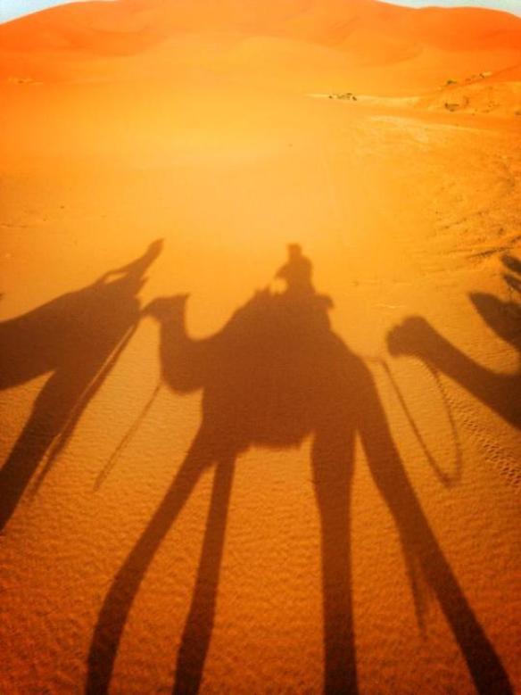 Sahara Desert Camel Riding, Morocco | Everywhere Bucket List
