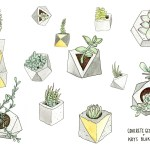 Wallpaper Plants Concrete Geometric