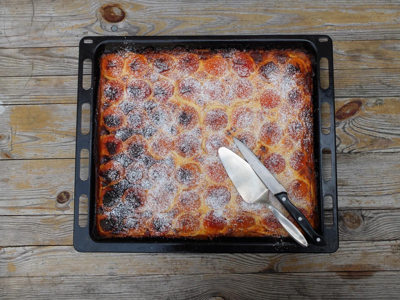 mangia minga // 'Fonsis apricot cheese cake'