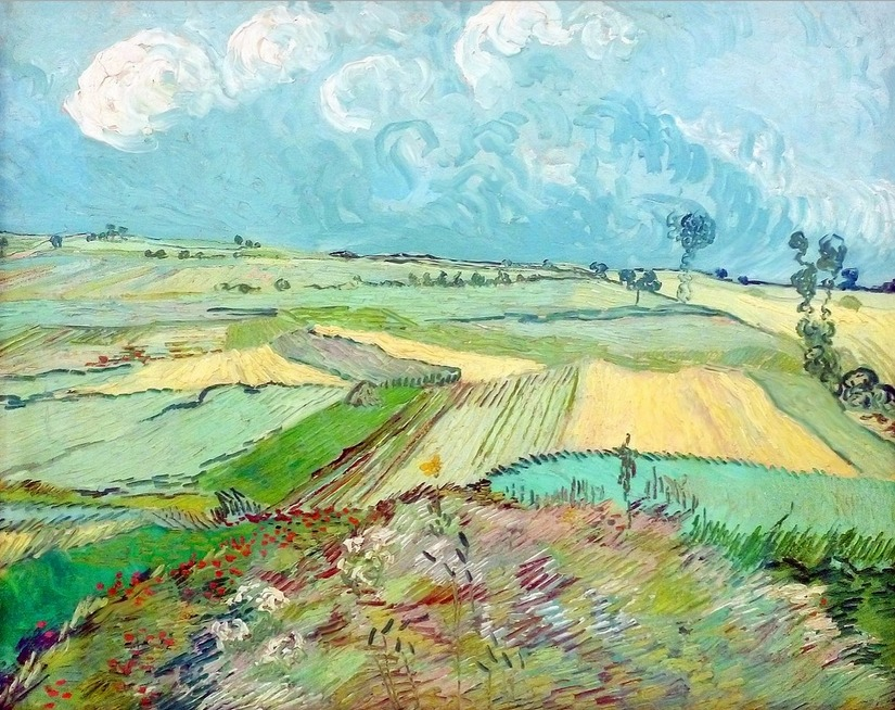 lonequixote:  The Plain of Auvers by Vincent van Gogh (via @lonequixote)