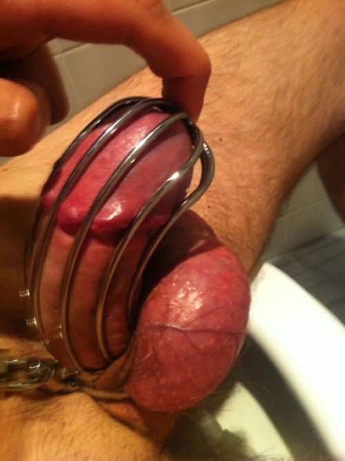 chastity strapon tumblr