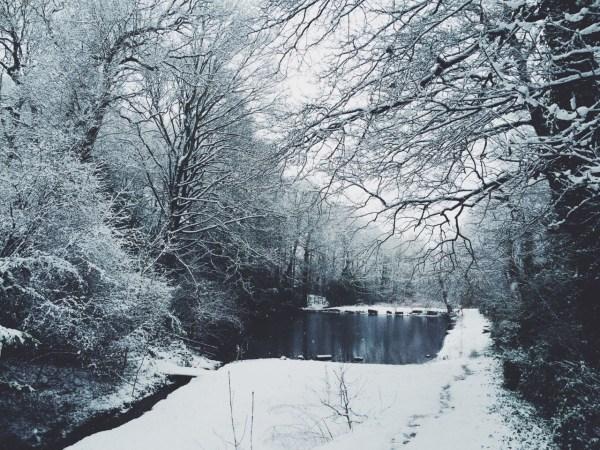 Art Landscape Nature Artists Vsco Lensblr Original