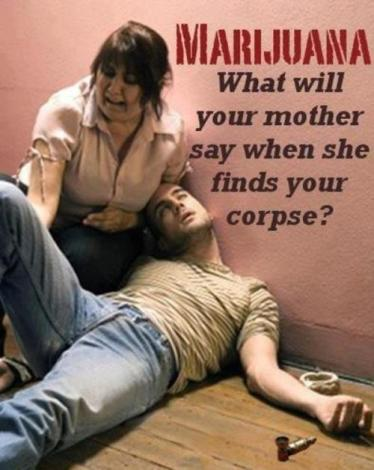 Image result for marijuana danger