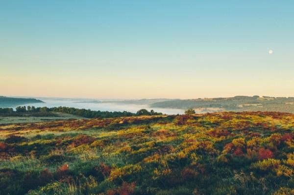 Art Landscape Canon Nature Artists