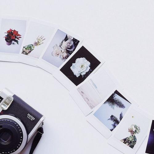 photograph grunge camera flowers