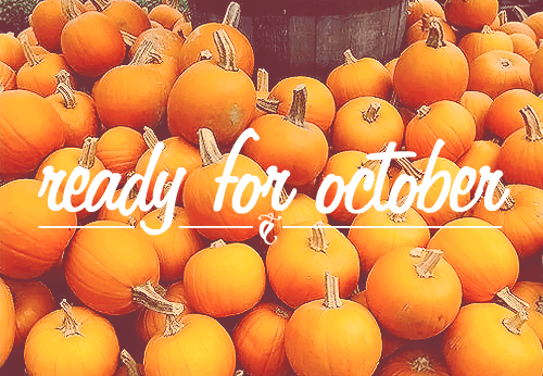 Image result for autumn pumpkin