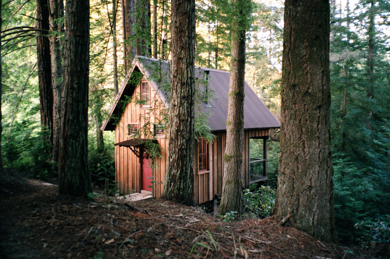 Owl Tree cabin in Albion, California. Available for rent.Contributed by Jez Burrows.