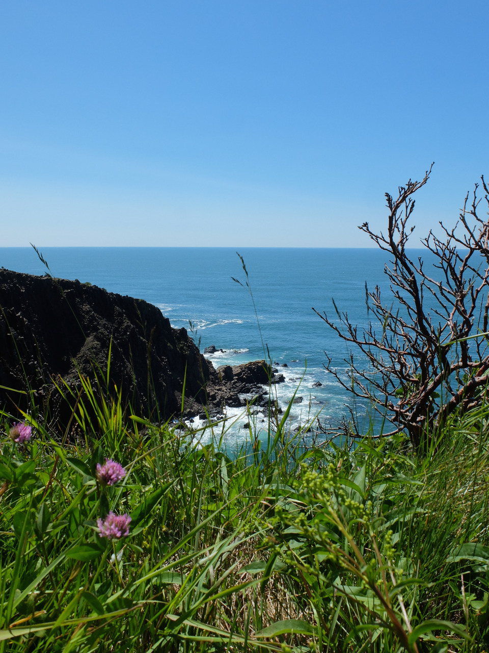 Travels: Grand Manan, New Brunswick. South Head
