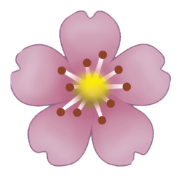 Transparent Hibiscus And Cherry Blossom Emoji  Delude