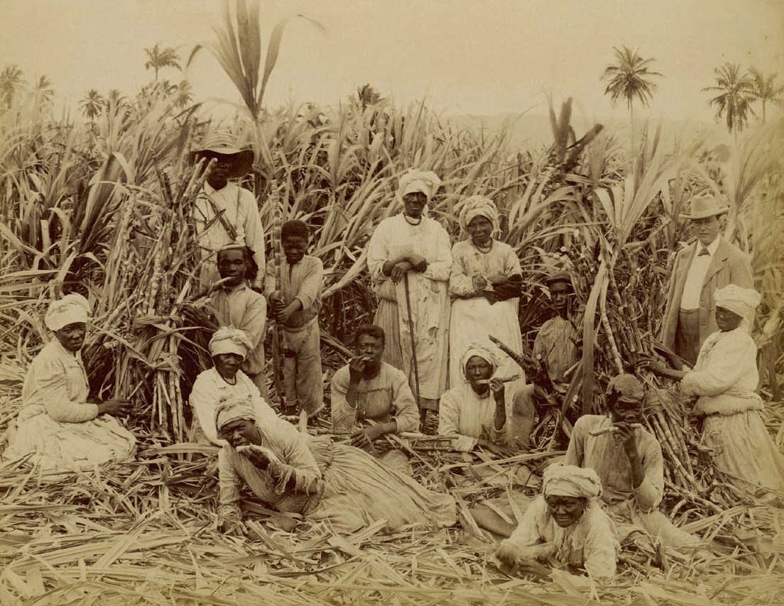 tembonzuri:</p> <p>Sugar Cane Cutters in Jamaica (around 1880) <br />
