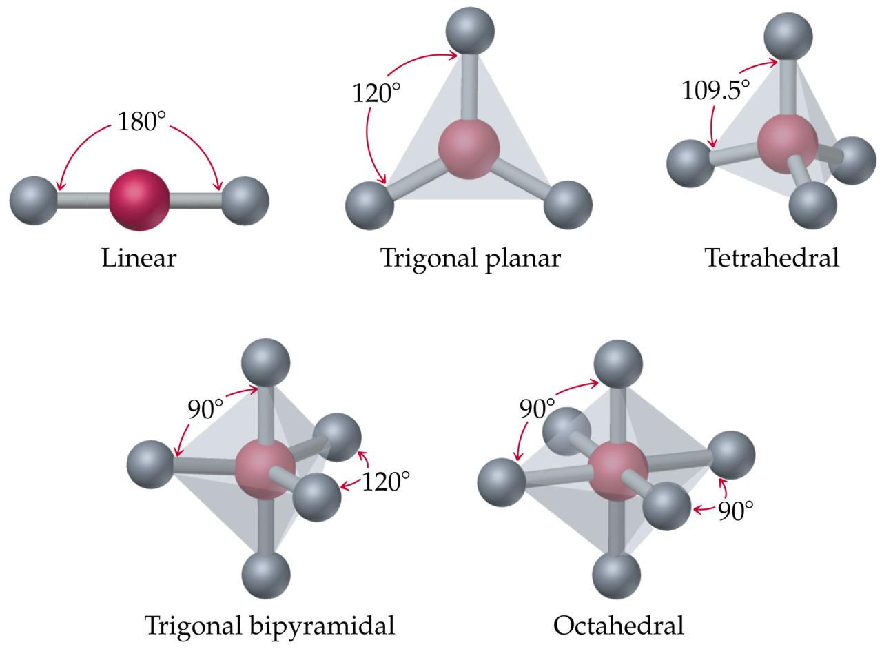 Chemistry Studybuddy