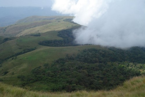 Chappal Waddi is a mountain in Nigeria and, at 2,419 meters, is the country's highest point. It is located in Taraba State, near the border with Cameroon, in the Gashaka Forest Reserve.