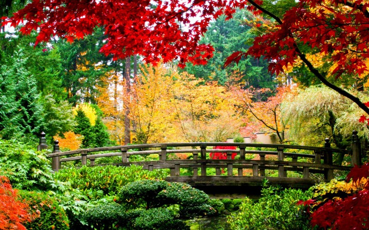 Nature Backgrounds Hd Wallpapers Mother Nature Windows