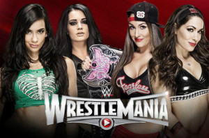 WrestleMania 31 - AJ Lee & Paige Vs The Bella Twins