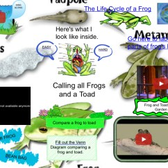 Frog And Toad Venn Diagram 2005 Dodge Stratus Wiring Calling All Frogs Animals Crafts Cycle Dissecting